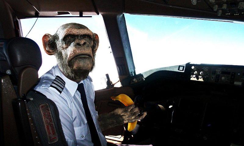 Смешные картинки пилота, 2007